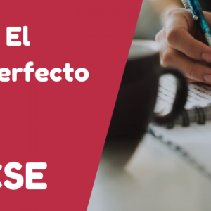 GCSE Booklet – The Imperfect